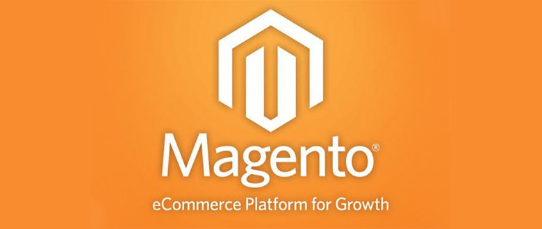 Website Development With Magento 2